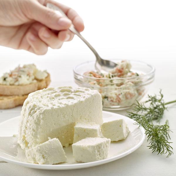 0220100-kit-cheese-maker-queso-casero-microondas-utensilios-libro-lekue-9
