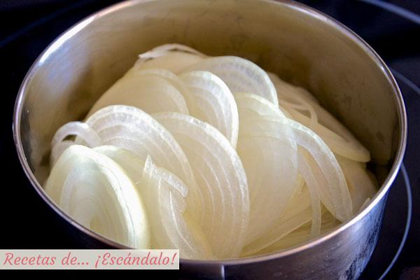 Cebolla en rodajas