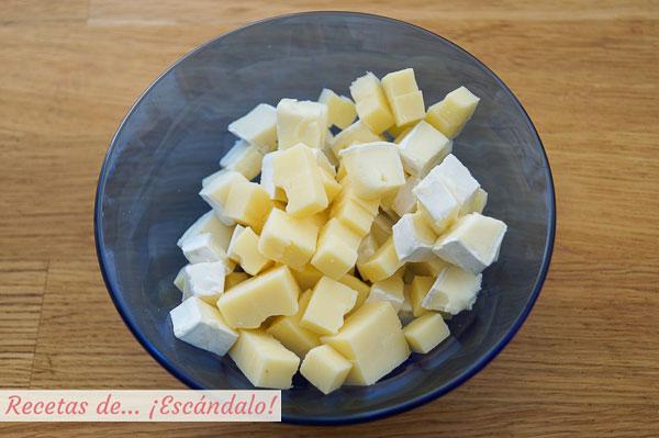 Quesos para salsa de queso