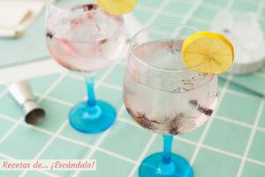 Gin Tonic, como preparar el mejor. Receta y consejo